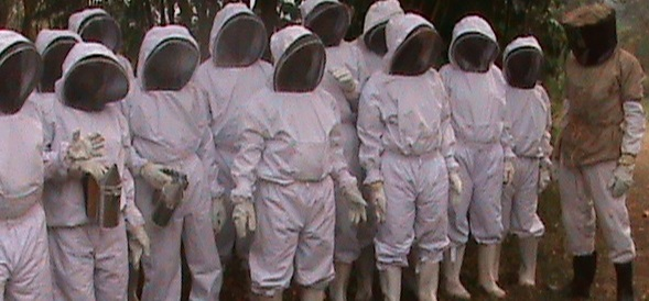 Bee Keeper Training Class